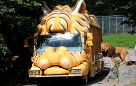 富士サファリパークのバスの写真