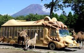 富士サファリパークのジャングルバスの画像