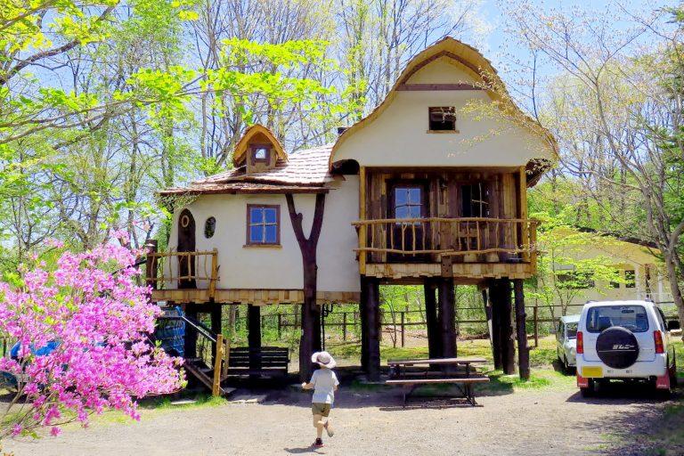 北軽井沢スウィートグラスのツリーハウスマッシュルームの写真