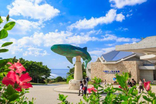 子連れ旅行の沖縄美ら海水族館の入り口の写真