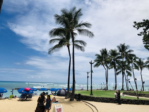 ハワイの子連れホテル2回目のビーチ写真
